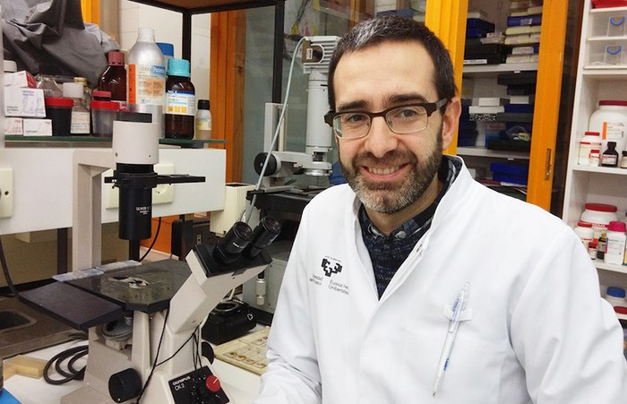 A research group from the University of the Basque Country (UPV/EHU) discovers new compounds that prevent COVID-19 infection